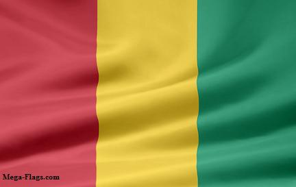 Flag of Guiena, Guinea Flag